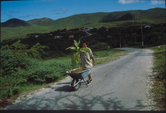 , 'Walk,' 2000, Guggenheim Museum
