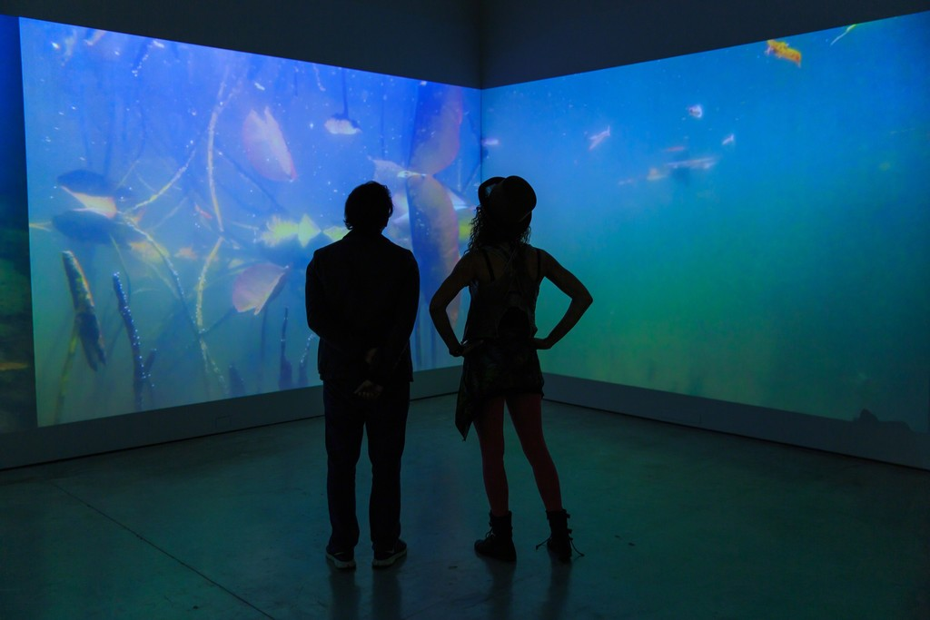 Installation view of Mark Fox, Giverny: Journal of an Unseen Garden (2010-2015) at Norton Museum of Art. Five channel video installation, edition 1 of 6. Photography by Tom Tracy.