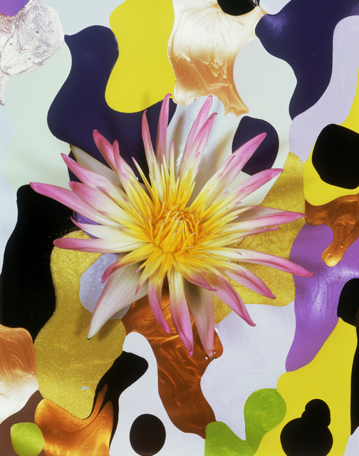 , 'Night Blooming Water Lily on Nail Polish Camouflage,' 2010, Jim Kempner Fine Art