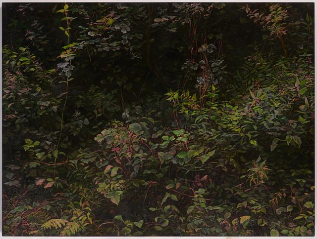 , 'Hedge 4,' 2018, UNION Gallery