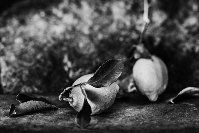, 'Lemons / Limones ,' 2015, Jacaranda Images