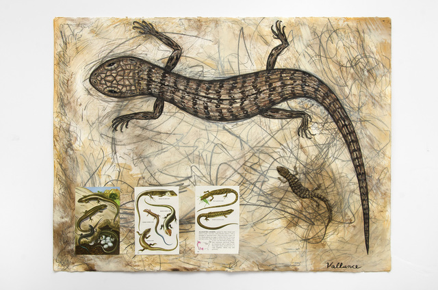 , 'I Love Reptiles (Elgaria multicarinata multicarinata),' 2016, Edward Cella Art and Architecture
