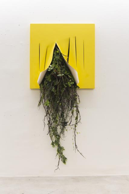 , 'Untitled,' 2019, Zipper Galeria