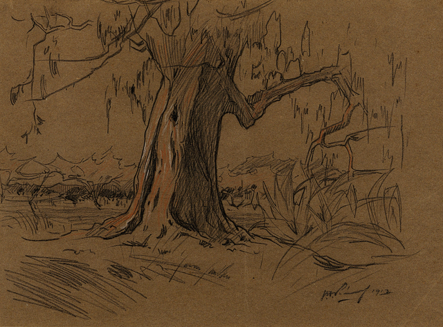 Jacob Hendrik Pierneef, 'Large Tree in a Landscape', 1913, Drawing, Collage or other Work on Paper, Charcoal on paper, Strauss & Co