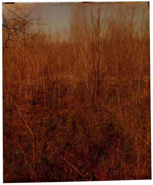 , 'Stovell Road at Stovell,' 2014, Jackson Fine Art