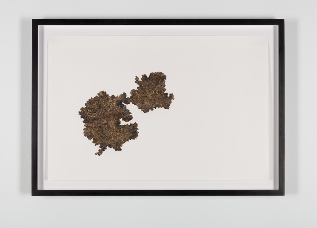 Santiago Reyes Villaveces, 'Fever Guainia (Inrida) ', 2019, Drawing, Collage or other Work on Paper, Graphite, 24k gold, and gold leaf on paper., Emerson Dorsch