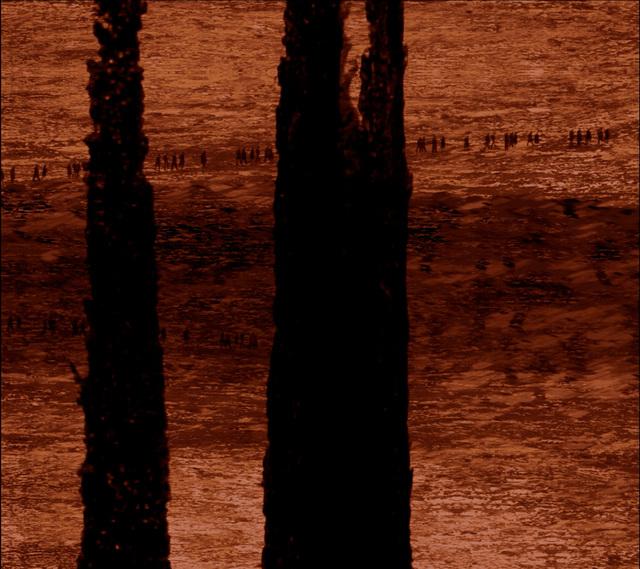 Michal Rovner, 'View', 2014, Michael Fuchs Galerie