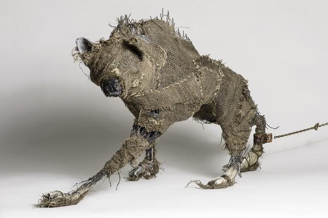 Elizabeth Jordan, 'Coyote wrapped in burlap Sculpture: 'The Queens Beast'', 2014, Ivy Brown Gallery