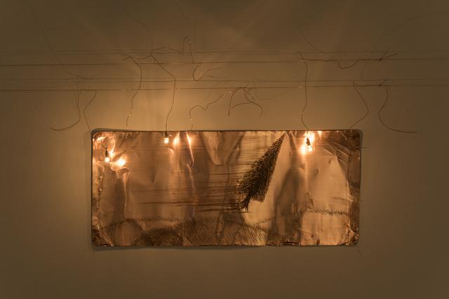 , 'Velocidad Absoluta,' 2010, Galeria Luisa Strina