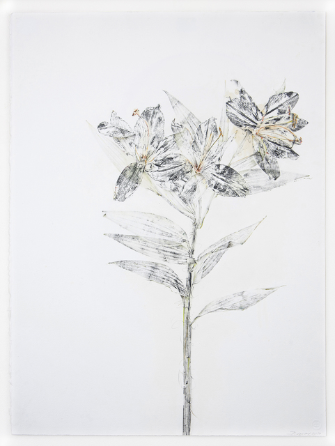 , 'Consider the Lilies, a study,' 2018, Talley Dunn Gallery