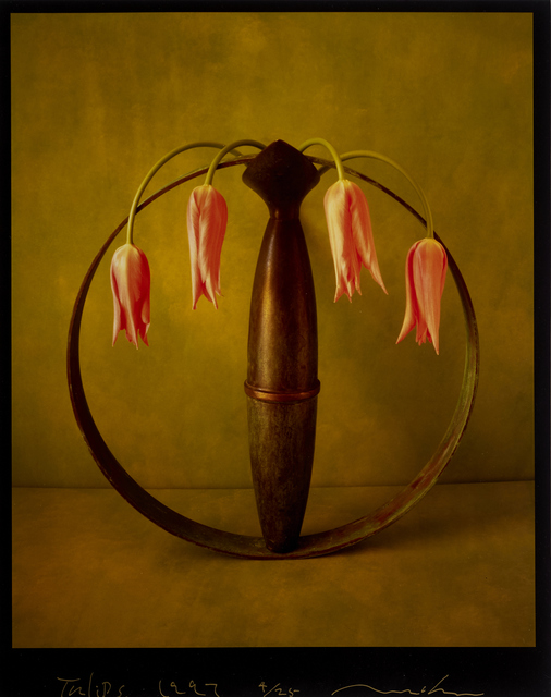 , 'Tulips,' 1997, Vision Neil Folberg Gallery