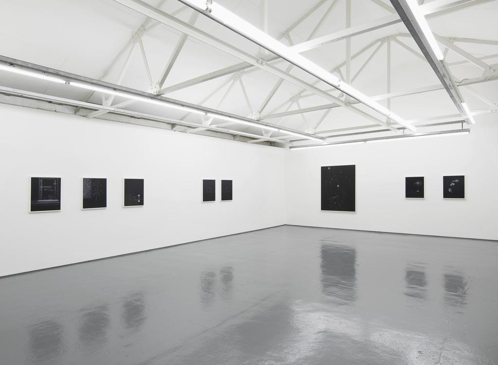 Sarah Jones exhibition view at Maureen Paley, London 2014