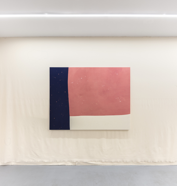 Manuel Tainha, 'MEDALHÂO', 2020, Painting, Bleach on sewn cotton, Foco