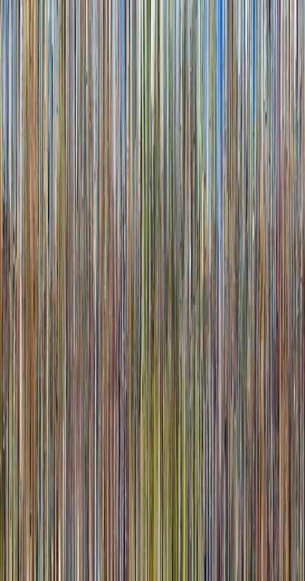 , 'Conelrad v09,' 2016, C. Grimaldis Gallery