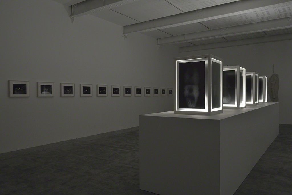 Giuseppe Penone Ebbi, Avrò, Non Ho (J'eus, J'aurai, Je n'ai) Installation View Galerie Marian Goodman, Paris September 9 – October 22, 2016