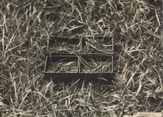 , 'Grass reorganisation,' 1969, Richard Saltoun