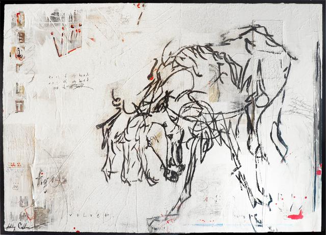 , 'Velvet,' , Melissa Morgan Fine Art