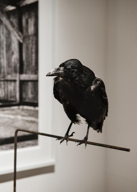 , 'Kras Kras,' 2017, Galerist