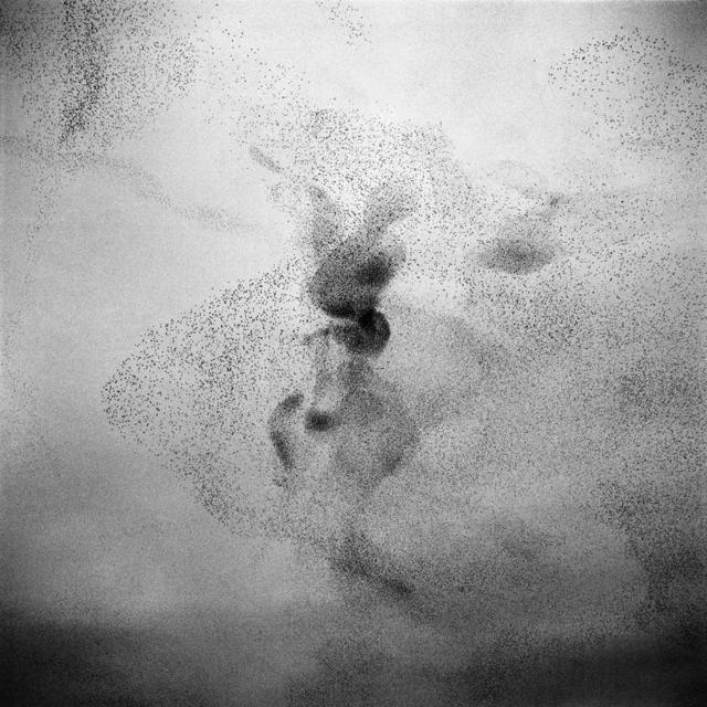, 'Untitled n°11,' 2009, ILEX Gallery