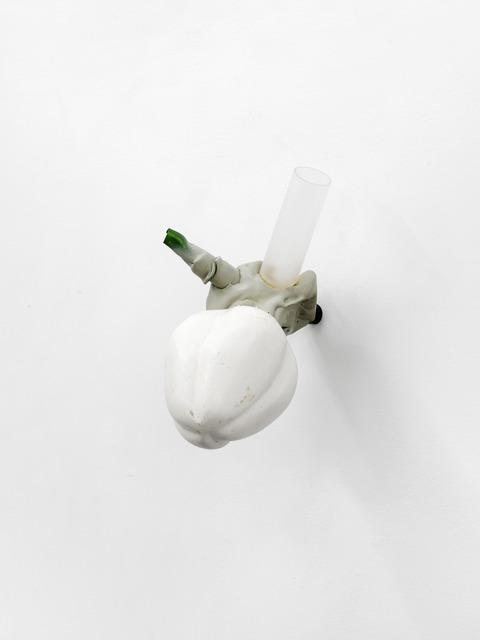 , 'Frucht,' 2016, Cindy Rucker Gallery