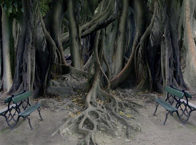 , 'Pesadilla,' 2011, Ansorena Galeria de Arte