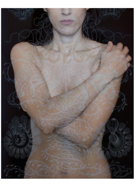 Tatiana Parcero, 'Universus #29', 2014, jdc Fine Art