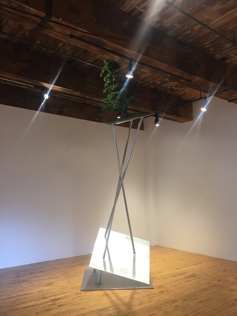 , 'Memories of Tomorrow (Bonsai) ,' 2020, Christopher Cutts Gallery