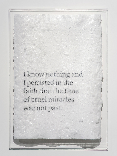 , 'I know nothing and I persisted in the faith that the time of cruel miracles was not past.,' 2016, Blindspot Gallery