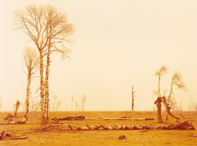 , 'Collapse, Siskiyou, California,' 2015, Moran Bondaroff