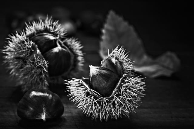, 'Chestnuts / Castañas ,' 2015, Jacaranda Images