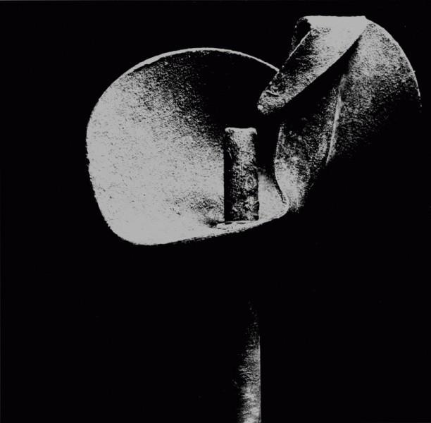 , 'Flower,' 1979, Photon Gallery