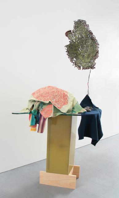 , 'Underwater Rattus,' 2016, Anglim Gilbert Gallery
