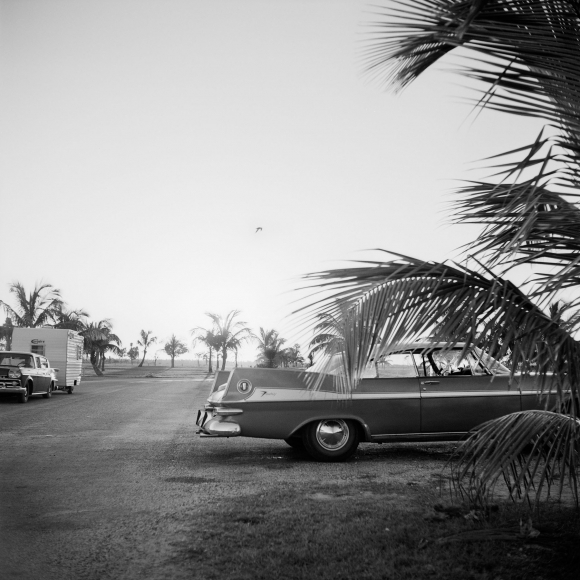 , '0129829 - x, n.d., Car with Palm Tree,' Printed 2017, KP Projects