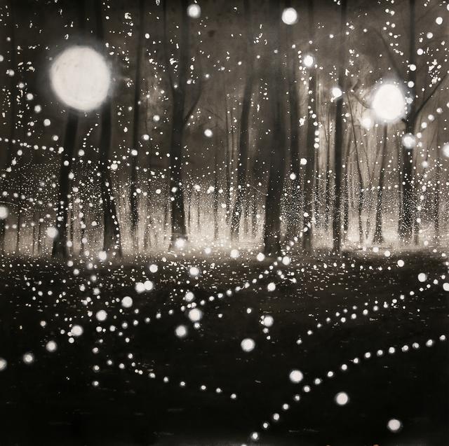 , 'O Bosque encantado,' 2015, Galeria Lume