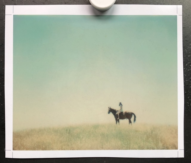 Stefanie Schneider, ''Renée's Dream' no. 7 (Days of Heaven)', 2005, Photography, Digital C-Print, based on an expired Polaroid, not mounted, Instantdreams