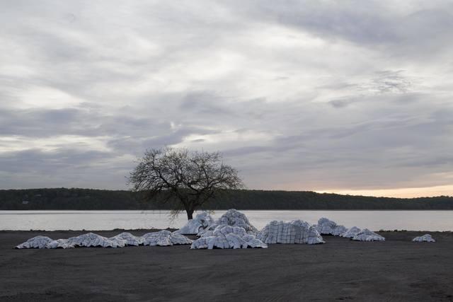 Malcolm D. MacDougall III, 'Stromatolites', 2015, Keene Arts