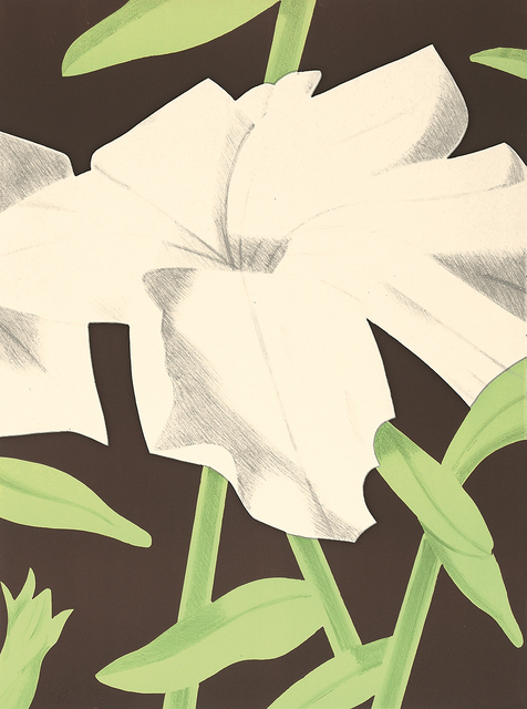 , 'White Petunia,' 1969, William Weston Gallery Ltd.