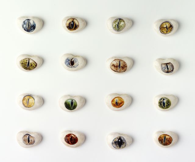 , 'Pliny's Natural History of Jewels, Reptile Eyes,' 2011, Anglim Gilbert Gallery