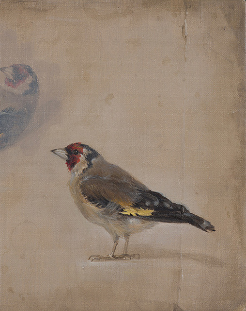 , 'Goldfinch,' 2017, The Scottish Gallery