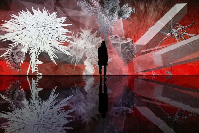 Miguel Chevalier, 'Fractal Flower 2014', 2014, Puerta Roja