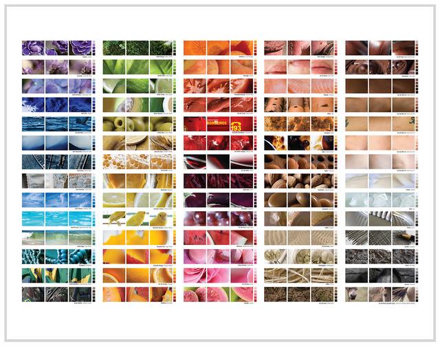 , 'Escala de Cor das Coisas - Painel,' , Fotospot