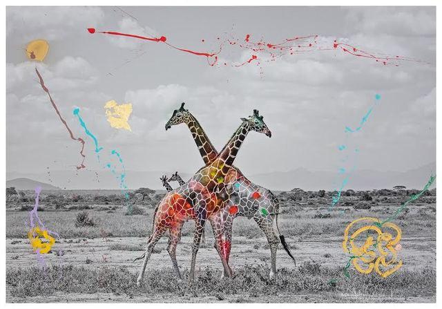 , 'Giraffe Duet,' 2018, Markowicz Fine Art