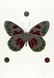 Science Xmas Butterfly (Emerald Green and Chili Red)