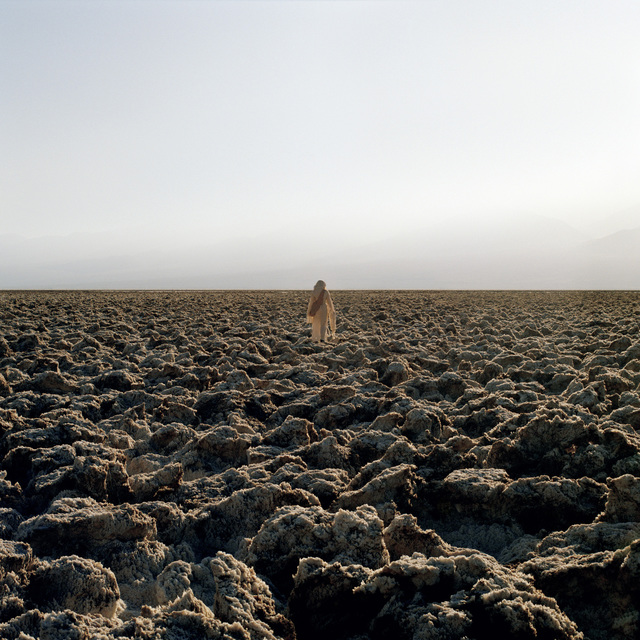 Mary Mattingly, 'Dry Season', 2007, Robert Mann Gallery