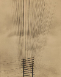 Telephone Wires, Mexico