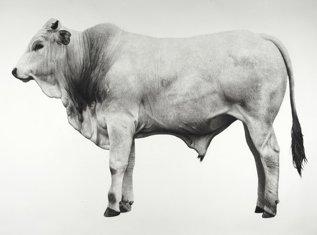 , 'Calf,' 2016, Purdy Hicks Gallery