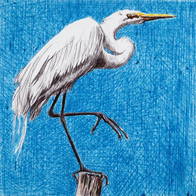 , 'I don't Draw on Sundays - 7650,' 2018, Beatriz Esguerra Art