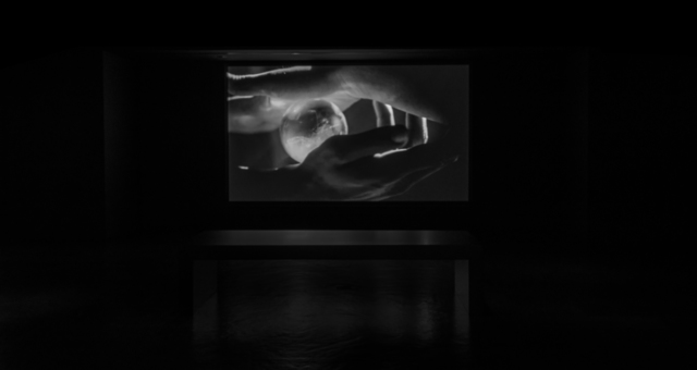 , 'ANCESTORS,' 2015, Empty Gallery