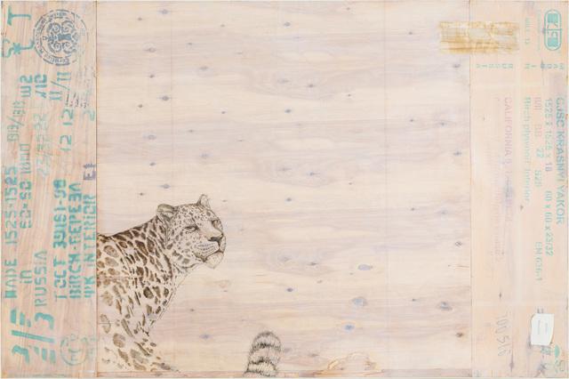 , 'EDNA: Panthera pardus orientalis (Amur Leopard)     ,' 2015, Mark Moore Fine Art