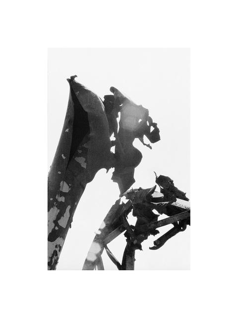 Joana Hadjithomas and Khalil Joreige, 'Les bestiaires 'dragon'', 1997, In Situ - Fabienne Leclerc